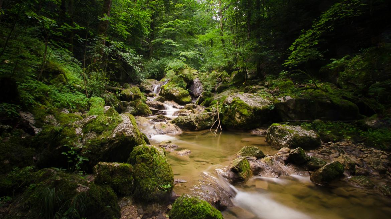 Wanderung Twannbachschlucht