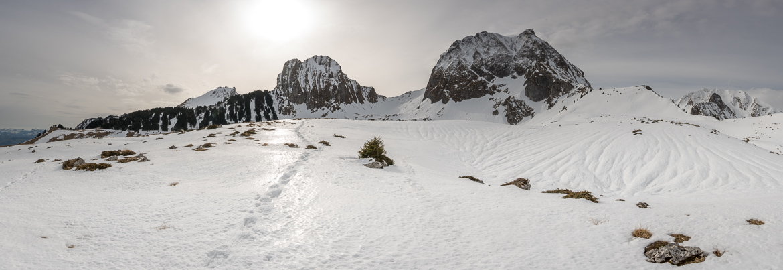 Schneeschuhwanderung Gantrisch