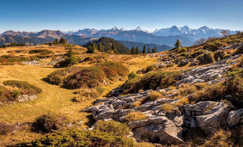 Wanderung Niederhorn