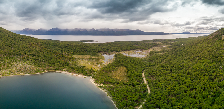 Punta Tombo - Laguna Margarita
